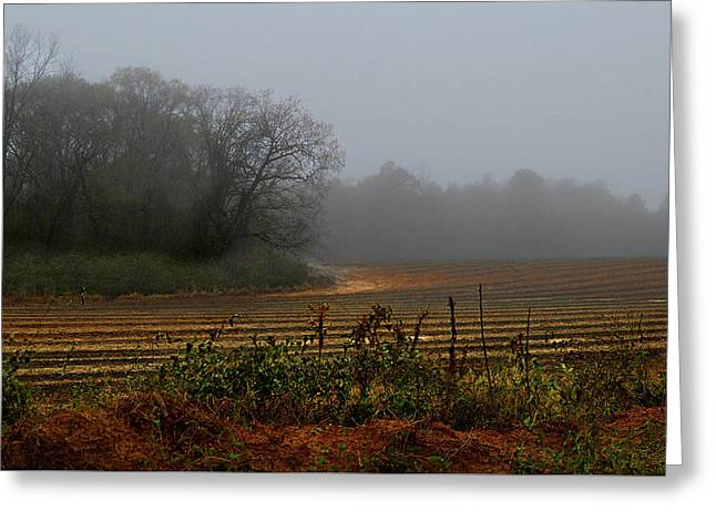 Fog In The Field Greeting Card by Laura Ragland