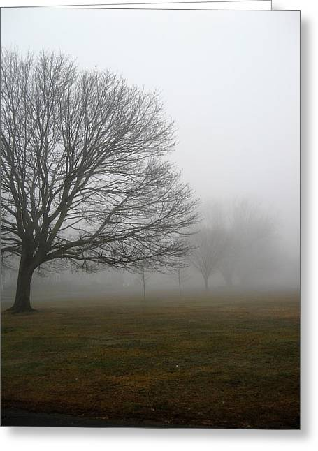 Fog Greeting Card by John Scates