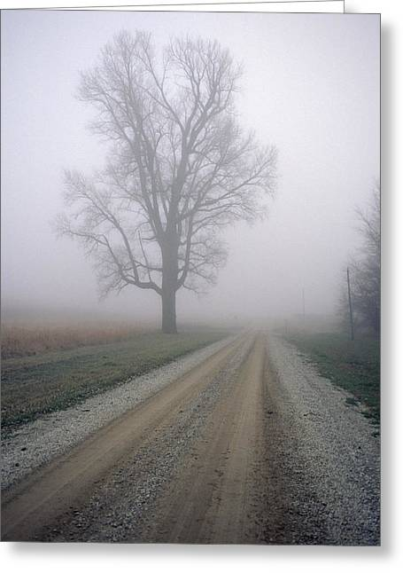 Fog Moves In On A Gravel Country Road Greeting Card by Joel Sartore