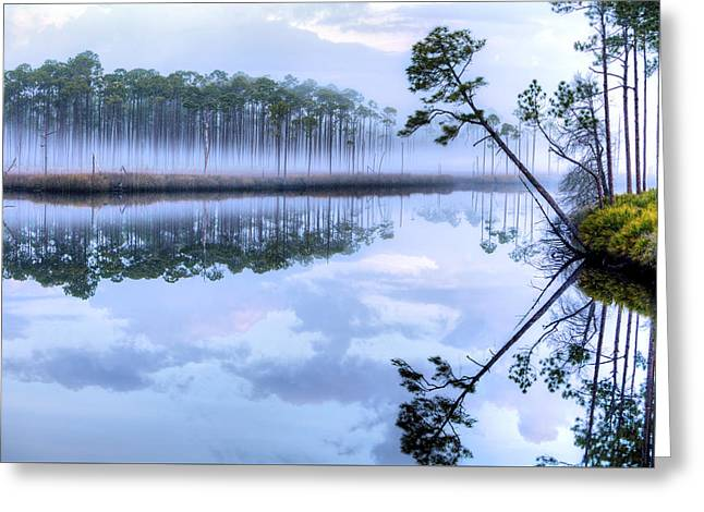 Fog On New River Greeting Card by JC Findley