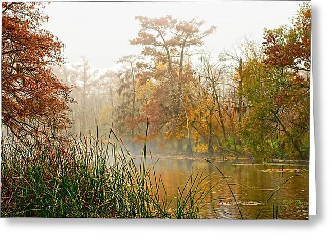 Fog On The Bayou Greeting Card by Bill Perry