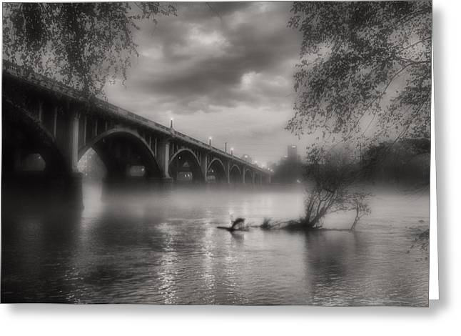 Fog On The Congaree Greeting Card by Bruce Willhoit