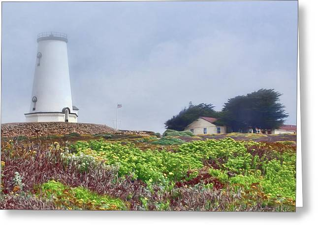 Greeting Card featuring the photograph Fog - Piedras Blancas by Nikolyn McDonald