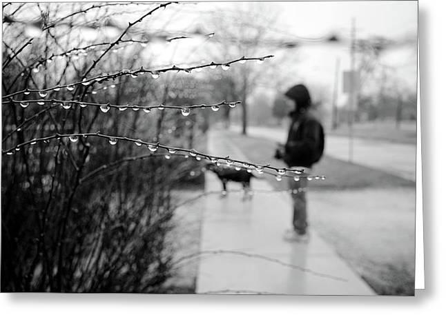 Fog Rain Greeting Card by Jeanette O'Toole