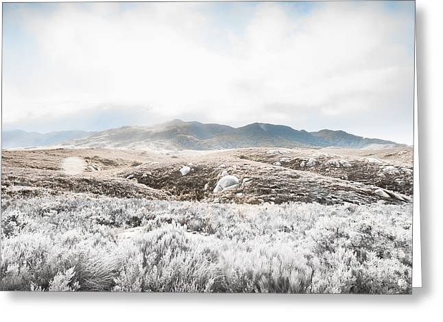 Fog Snow And Ice Landscape Greeting Card