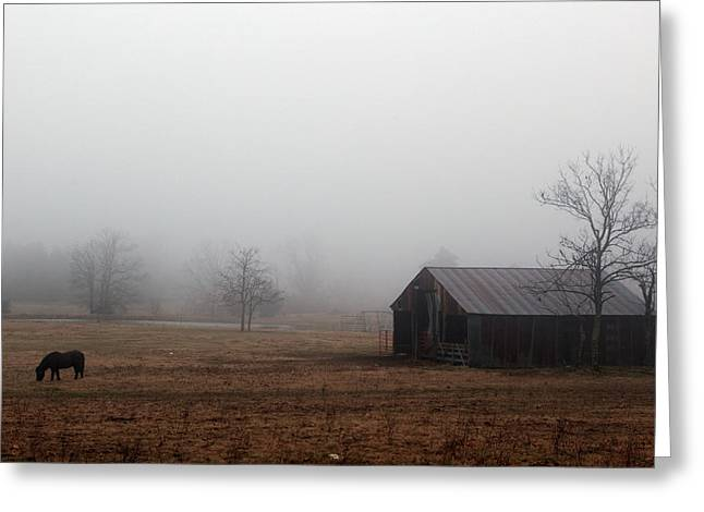 Foggy Barnyard Greeting Card