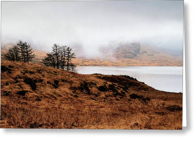 Foggy Day At Loch Arklet Greeting Card by Jeremy Lavender Photography