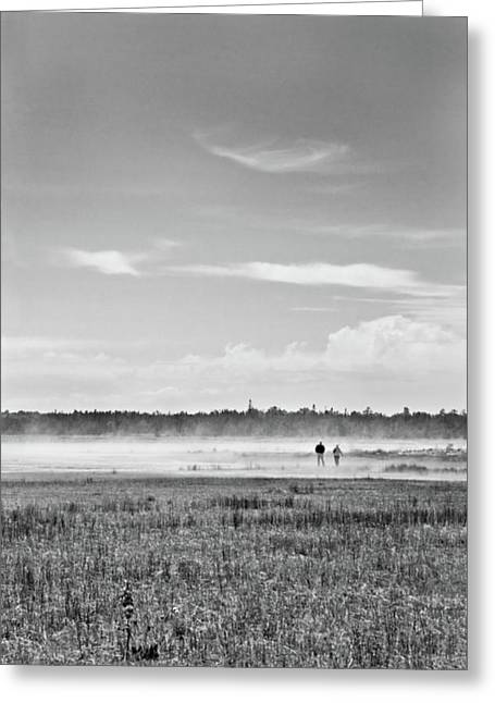 Foggy Day On A Marsh Greeting Card