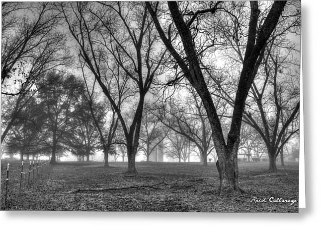 Foggy Day Pecans Landscape Farm Scene Greeting Card