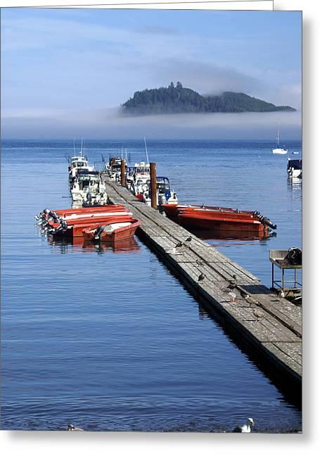 Foggy Dock Greeting Card by Marty Koch