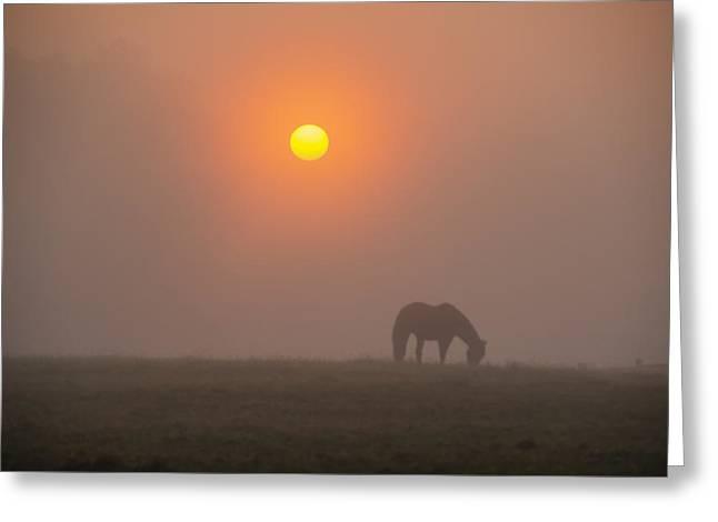 Foggy Farm Sunrise - Whitemarsh Pa Greeting Card by Bill Cannon