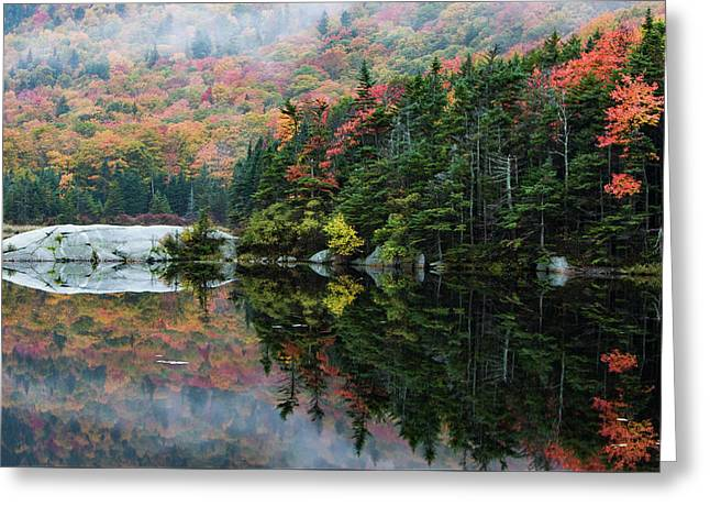 Greeting Card featuring the photograph Foggy Foliage Morning Kinsman Notch by Jeff Folger