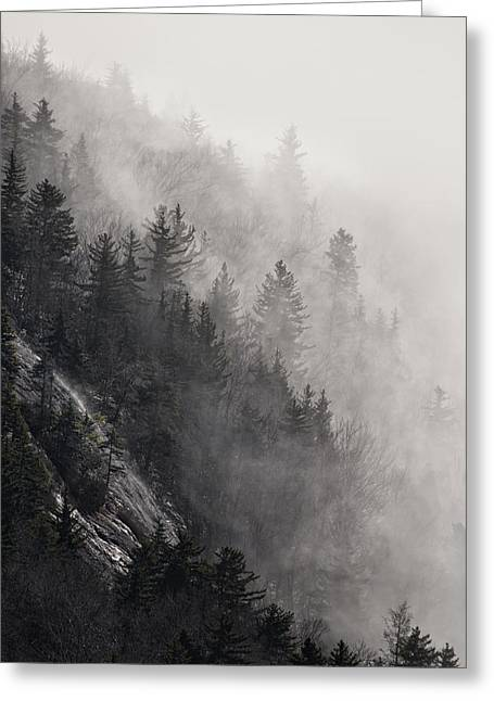 Greeting Card featuring the photograph Foggy Mountain Forest by Ken Barrett