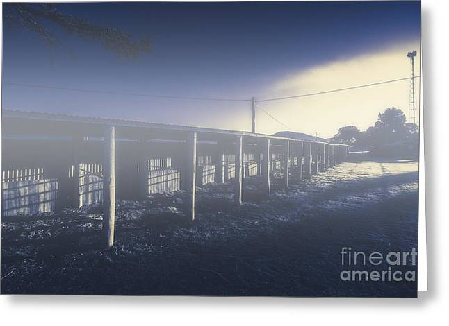 Foggy Horse Stables Greeting Card by Jorgo Photography - Wall Art Gallery