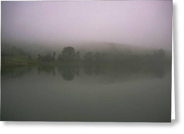 Foggy Lake Shore Greeting Card by Ralph Steinhauer