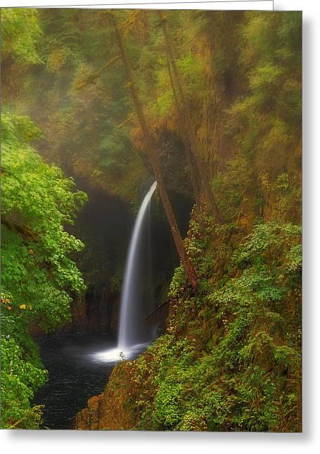 Foggy Metlako Falls Greeting Card by David Gn