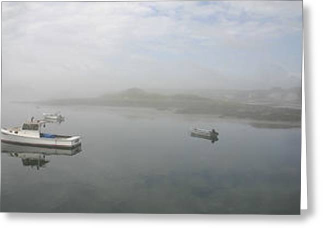 Foggy Morning At Cape Porpoise Greeting Card by David Bishop