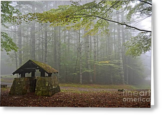Foggy Morning At Droop Mountain Greeting Card