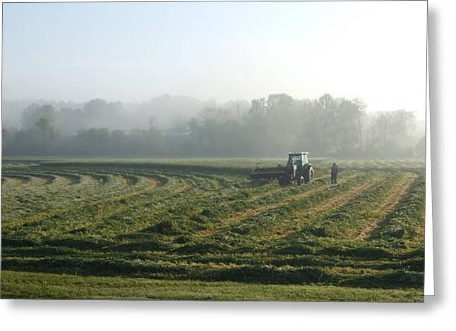 Foggy Morning Field 2 Greeting Card by Janet  Telander