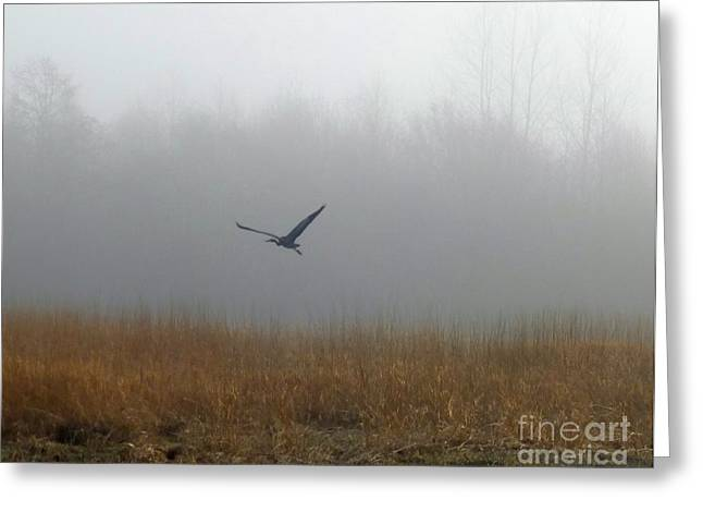 Foggy Morning Heron In Flight Greeting Card by Helen Campbell