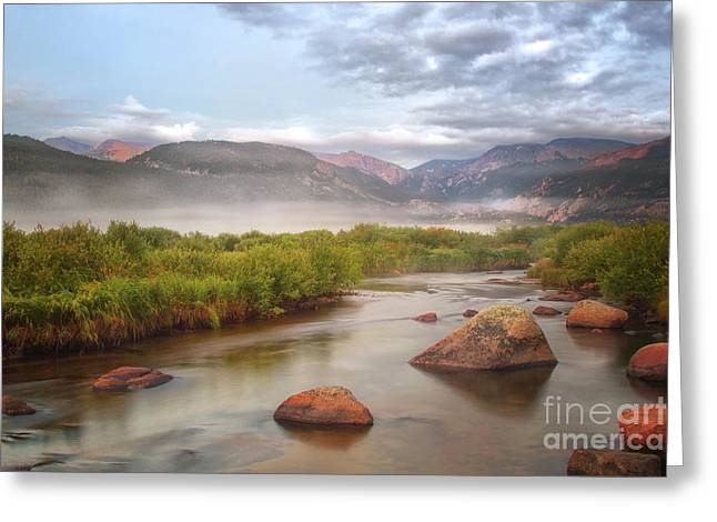 Foggy Morning In Moraine Park Greeting Card by Ronda Kimbrow