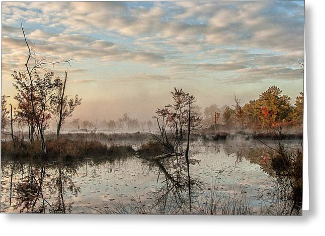 Greeting Card featuring the photograph Foggy Morning In The Pines by Louis Dallara