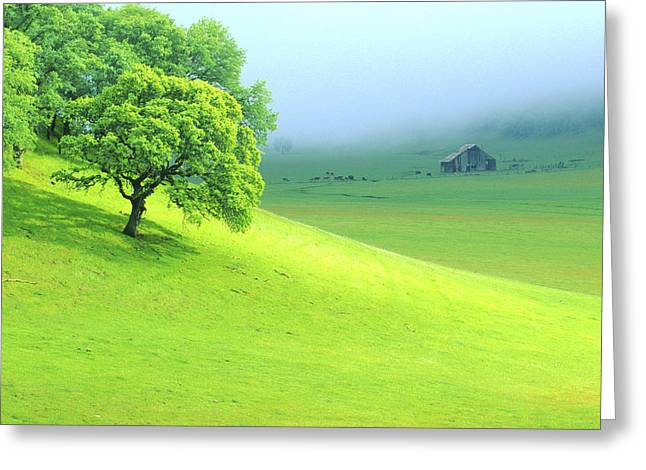 Foggy Morning In The Valley Greeting Card by Eggers Photography