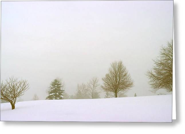 Foggy Morning Landscape 15 Greeting Card by Steve Ohlsen