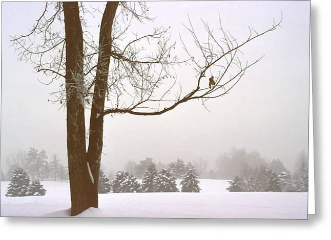 Foggy Morning Landscape 16 Greeting Card by Steve Ohlsen