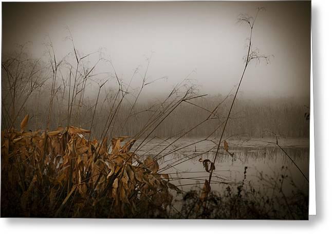Foggy Morning Marsh Greeting Card