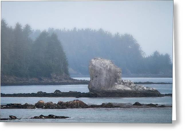 Foggy Morning On The Pacific Coast Greeting Card by Dan Sproul