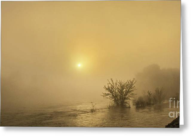 Foggy Morning On The Payette River Greeting Card