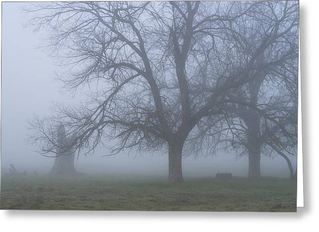 Greeting Card featuring the photograph Foggy Morning by Randy Bayne