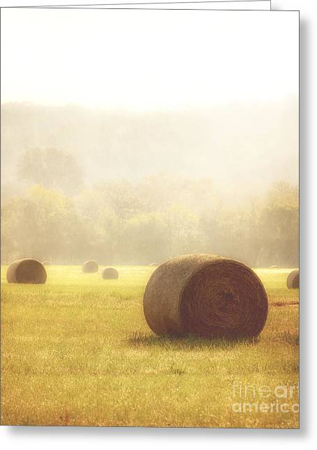 Foggy Morning Greeting Card by Tamyra Ayles