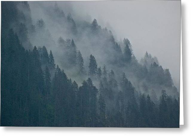 Foggy Mountain Ridge Greeting Card by Eric Tressler