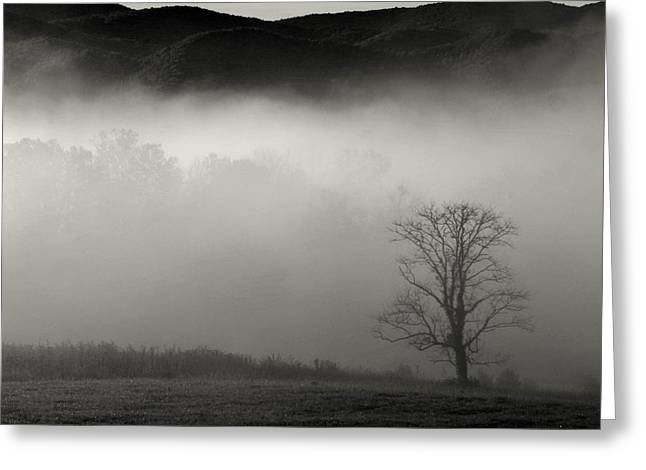 Foggy Mountain-tennessee Greeting Card