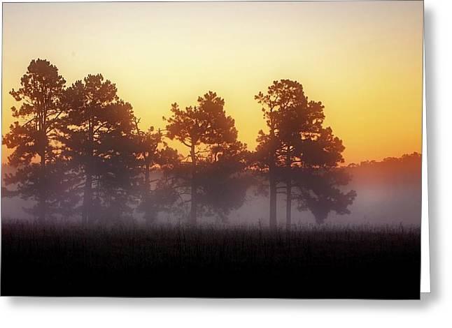 Foggy Ozark Morning  Greeting Card