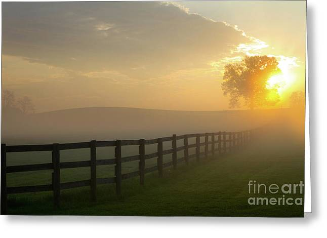 Foggy Pasture Sunrise Greeting Card