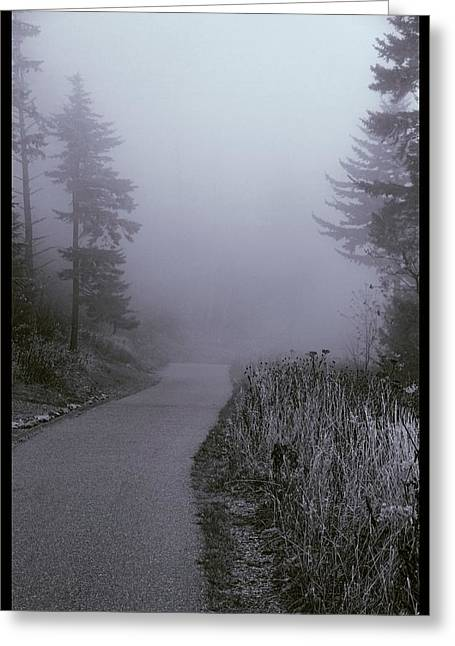 Foggy Path Clingman's Dome Greeting Card by Dan Sproul