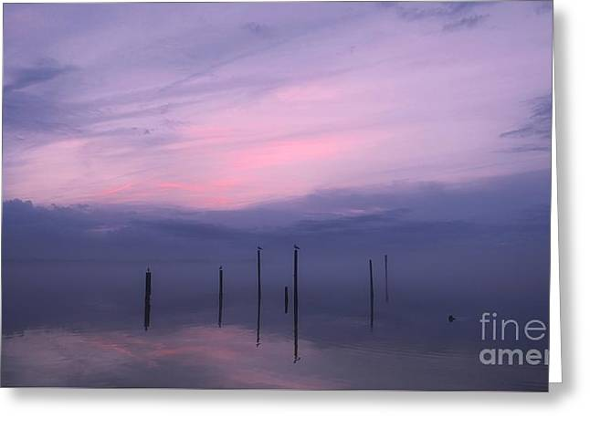 Foggy Purple Haze Sunset Greeting Card by Benanne Stiens