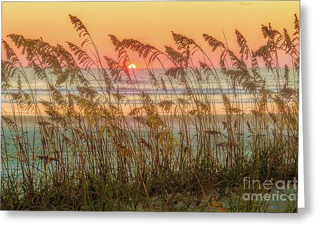 Foggy Sunrise Greeting Card by C W Hooper