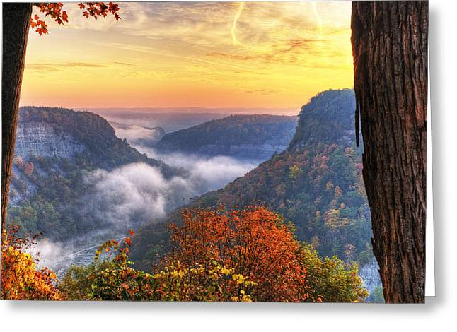Foggy Sunrise Over Letchworth State Park In New York Greeting Card