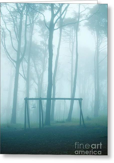 Foggy Swing Greeting Card by Carlos Caetano