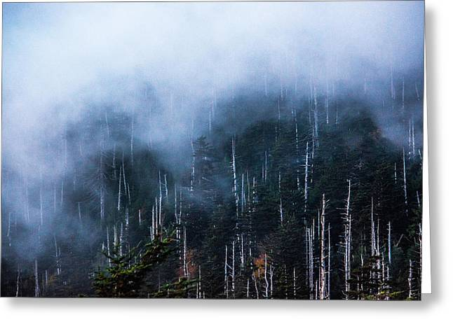 Foggy Tranquility Greeting Card by Shelby Young