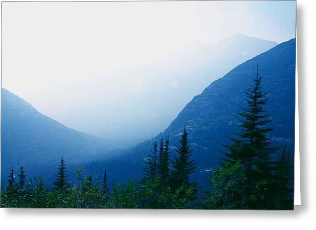Greeting Card featuring the photograph Foggy Valley by Jack G  Brauer