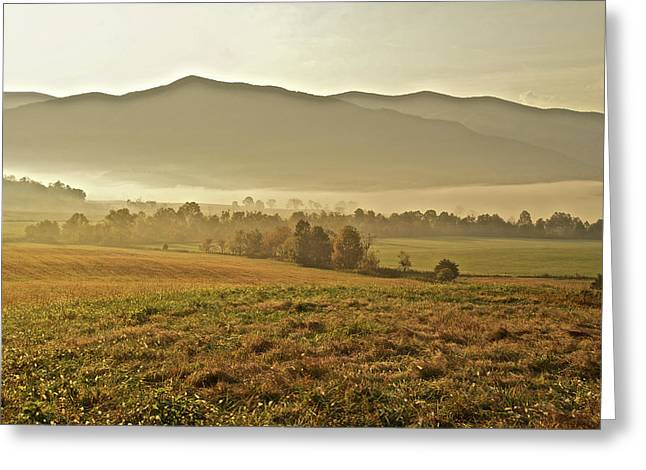 Foggy Valley Greeting Card by Michael Peychich