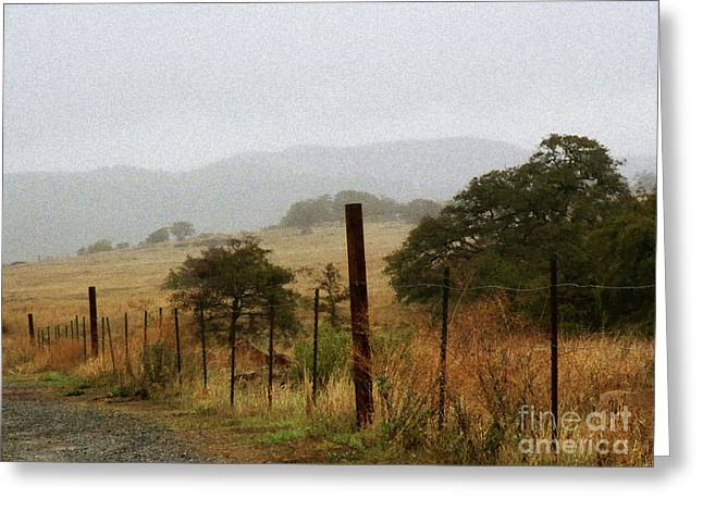 Foggy Wet Morning Greeting Card by Robert Ball
