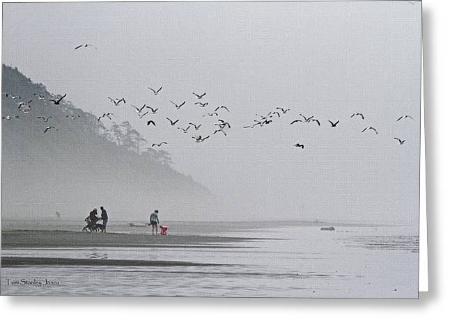 Foggy  Windy Washington Beach Greeting Card