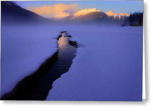 Foggy Winter Days In Banff Greeting Card