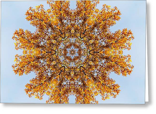 Foliage Creations 19 Greeting Card by Lilia D